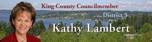 banner image showing Councilmember Kathy Lambert
